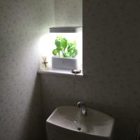 greenformcube(グリーンファームキューブ)