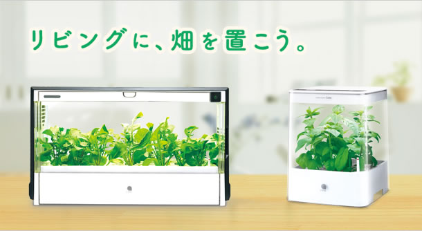 日当たり不要。室内で簡単水耕栽培ができるGreen Farm Cubeが欲しすぎる!